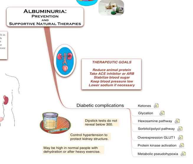Ndayurveda Ayurvedic Kidney Treatment In India Ayurvedic Treatment For Kidney Failure